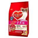ビューティープロ ドッグ 12ヵ月頃まで 子犬用 3kg(500g×6袋) ドッグフード ビューティープロ 関東当日便