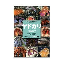 ネイチャーウォッチングガイドブック ヤドカリ 書籍 甲殻類 関東当日便