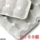紙製卵トレー 45×29cm 100枚セット 昆虫 コオロギ 飼育 ハウス ケース お一人様1点限り 関東当日便