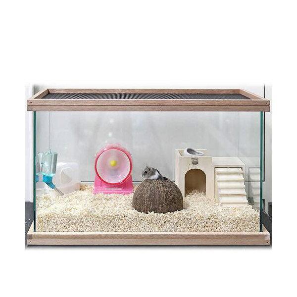 ドワーフハムスター飼育 ココナッツバスセット 600 ケージ・飼育容器(寸法)幅60cm〜 関東当日便