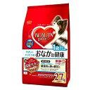 箱売り ビューティープロ ドッグ 腸内環境の維持 1歳から 2.7kg(450g×6パック) 1箱4袋入り ビューティープロ 成犬用 関東当日便