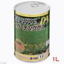 JガーデングラスDX 温暖地用(西洋芝の種) 1L缶入り(約10平方m) 家庭菜園 関東当日便