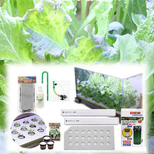 60センチ水槽用 水耕栽培キット 水耕栽培 野菜 家庭菜園 お一人様1点限り 関東当日便