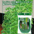 サイドロープ緑のカーテンネット1.8m×5m 家庭菜園 ベランダ菜園 関東当日便