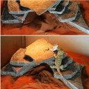 形状お任せ 爬虫類用バスキングスポット ~ウォーム・プレート~ Mサイズ 3個 爬虫類 レイアウト用品 関東当日便