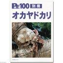 プロファイル 100別冊 オカヤドカリ 飼育 書籍 関東当日便