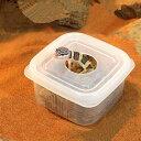 ウェットボックスシェルター Sサイズ 爬虫類 ヘビ ヤモリ 産卵床 シェルター 関東当日便