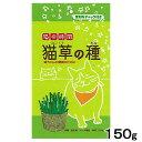猫の時間 猫草の種 150g エン麦 関東当日便