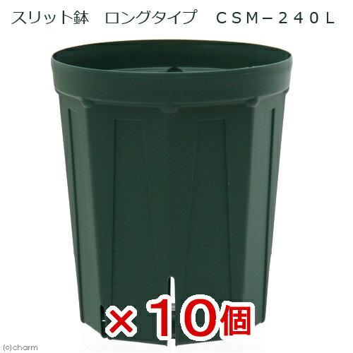 スリット鉢 ロングタイプ CSM−240L 10個入り ガーデニング 鉢 お一人様1点限り 関東当日便