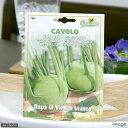 ゆうパケット対応 HORTUS イタリア野菜の種 コールラビ・ビアンコ Art.1261 家庭菜園 同梱・代引き・着日指定不可