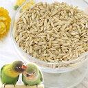 小鳥のためのむきえん麦 50g(殻なし) 鳥 フード 餌 おやつ 無添加 無着色 関東当日便
