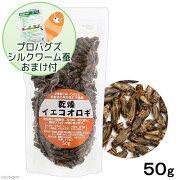 乾燥イエコオロギ 50g(約600〜650匹入り) プロバグズミルワーム20gおまけ付き 関東当日便