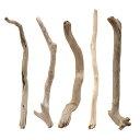 形状おまかせ 棒状流木 ショート 5本セット DIY素材 インテリア用 関東当日便