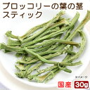 国産 ブロッコリーの葉の茎スティック 30g 小動物のおやつ 無添加 無着色【HLS_DU】 関東当日便