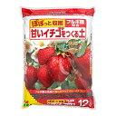 花ごころ 甘いイチゴをつくる土 12L お一人様4点限り 関...