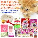 私の子猫ちゃん 〜どれを食べようかにゃーセット〜 ペットフード保存容器&タオル&ビニール手袋おまけ・説明書付 キャットフード