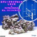 (海水魚)Sグレード形状お任せライブロック Lサイズ(1個) + スタンドNo.12 セット 本州・四国限定