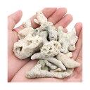 サンゴ石 2〜5cm(形状お任せ) 5個