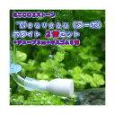 CO2拡散器 ミニCO2ストーン Neuveau(ヌーボ) ホワイト 2個セット(チューブ3m+キスゴム6個付属) 関東当日便