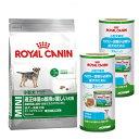 ロイヤルカナン 適正体重を維持したい小型犬用セット ドライ4kg + ウェット3缶パック×2【HLS_DU】 関東当日便
