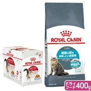 ロイヤルカナン 猫 健康な尿を維持したい成猫用 ぷるんとゼリー パウチ12袋 + ドライフード 400g【HLS_DU】 関東当日便