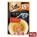 シーバ アミューズ 18歳以上 お魚の贅沢スープ ささみ添え 40g 6袋入り キャットフード 関東当日便