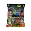 消費期限 2020/01/31マルカン フルーツ農園 フラット55 関東当日便