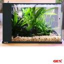 (熱帯魚)(水草)GEX ラクテリア ブラック ミクロソリウムレイアウトセット お一人様1点限り 本州四国限定