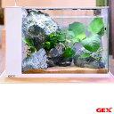 (熱帯魚)(水草)GEX ラクテリア ホワイト アヌビアスレイアウトセット お一人様1点限り 本州四国限定