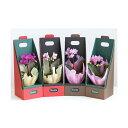 (観葉植物)鉢花ギフト マイクロ胡蝶蘭 2.5号 1本立ち(2WAYボックス入り) 花色おまかせ