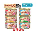 アソート 日清 かつおの達人 うまみスープ 80g 6種6缶...