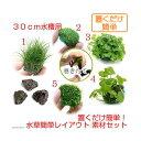(水草 熱帯魚)置くだけ簡単 30cm水槽用 水草簡単レイアウト 素材セット 北海道航空便要保温