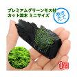 (水草)巻きたて プレミアムグリーンモス付 カット流木 ミニサイズ(5〜8cm)(無農薬)(1個)