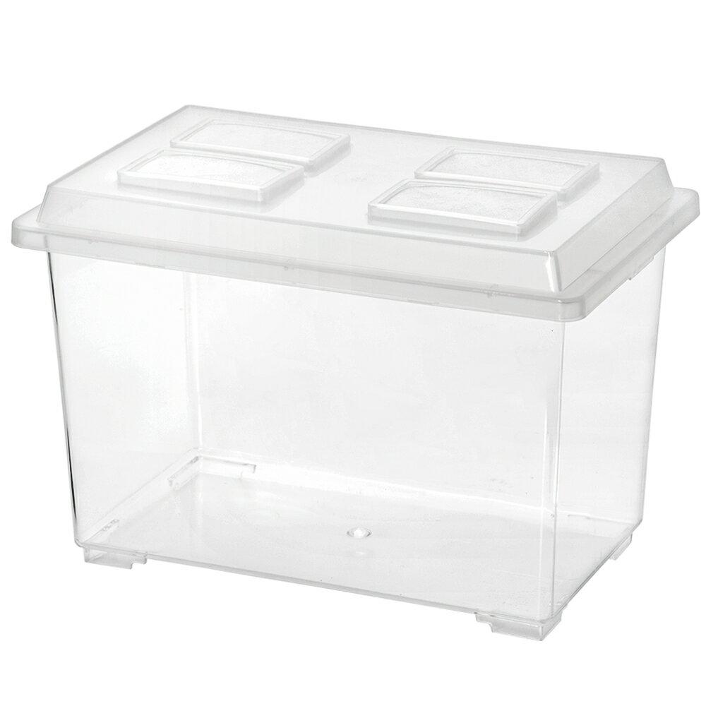 コバエシャッター 大 (370×221×240mm) プラケース 虫かご 飼育容器 昆虫 …...:chanet:10030050