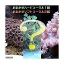 (海水魚 サンゴ)おまかせソフト2種+ハード1種セット Sサ...