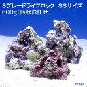 (海水魚)Sグレードライブロック SS−Sサイズ(600g)(形状お任せ) 北海道航空便要保温