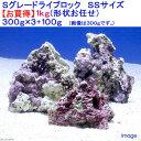 (海水魚)Sグレードライブロック SSサイズ お買得(1kg)(形状お任せ) 北海道・九州航空便要保温