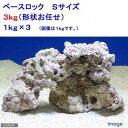 (海水魚)ベースロック Sサイズ お買得(3kg)(形状お任せ) 北海道航空便要保温