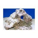 (海水魚)ベースロック S−Mサイズミックス お買得(4kg)(形状お任せ) 北海道航空便要保温
