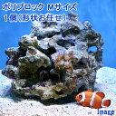 (海水魚)ライブロック ポリプロック Mサイズ(1個)(形状お任せ) 北海道航空便要保温
