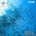 C.P.Farm直送(海水魚)天然海水 20L(1個口相当)別途送料 海水