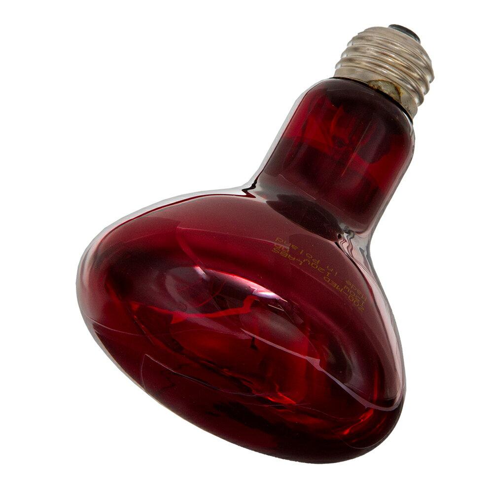 ZOOMED 赤外線保温電球 インフラレッドヒートランプ 150W 爬虫類 保温球 関東当日便