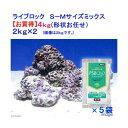 (海水魚)ライブロック S-Mサイズミックス お買得(4kg)(形状お任せ)+PSBQ10 海水用 150ml 本州・四国限定