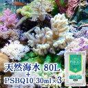 (海水魚)天然海水(海洋深層水)80リットル +PSBQ10 30mL×3袋 同梱不可・航空便不可 送料無料