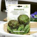 HORTUS イタリア野菜の種 アーティチョーク(カルチョーフィ)・ロマネスコ Art.421 家庭菜園 関東当日便