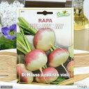 HORTUS イタリア野菜の種 ターニップ・ミラノ Art.5261 家庭菜園 関東当日便