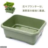 緑のやさいプランター 50型(グリーン)