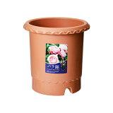 バラ鉢 ブラウン 8号 φ24×24cm 関東当日便