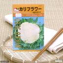野菜の種 カリフラワー 品番:2121 家庭菜園 関東当日便
