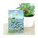 HORTUS イタリアの花の種 ワスレナグサ Art.M074 家庭菜園 関東当日便